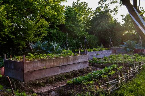 Chambre d'hote Vienne - jardin potager