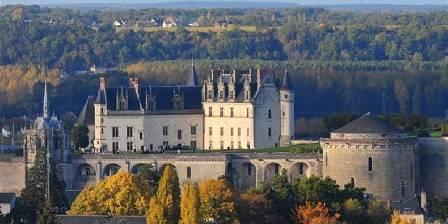 Le Clos de la Chesneraie Chateau Amboise