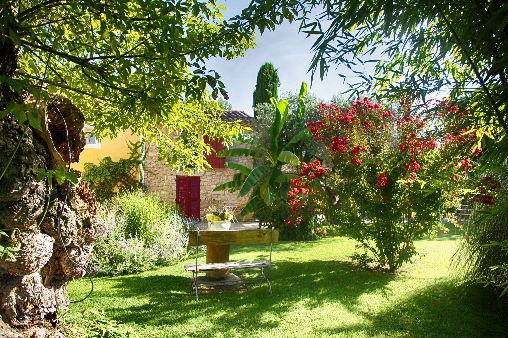 Bed & breakfasts Vaucluse, from 85 €/Nuit. House of character, Carpentras (84200 Vaucluse), Charm, Swimming Pool, Garden, WiFi, Parking, 5 Double Bedroom(s), 15 Maximum People, Lounge, South Direction, No Smoking House, Pe...