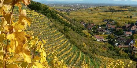 Chalet Le Rebberg Niedermorschwihr village proche de Colmar