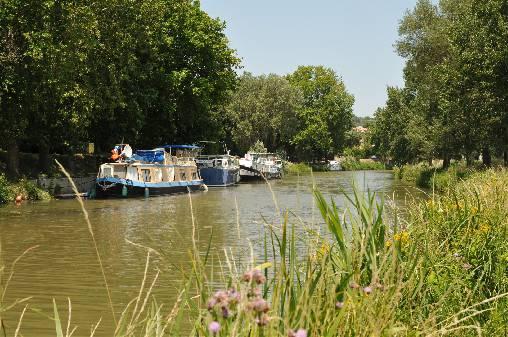 Canal du Midi à 300m de la chambre d'hôtes