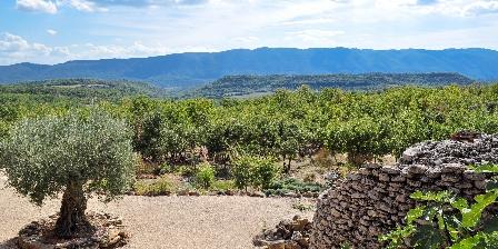 La Lézardière View from Borie's Cottage