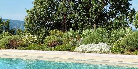 La Lézardière 2nd view pool