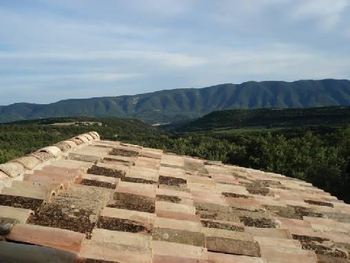 vue du toit de l'olivier