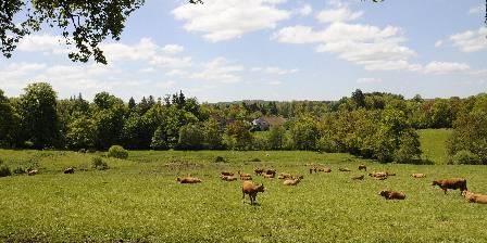 Villa Vallière Les Limousines