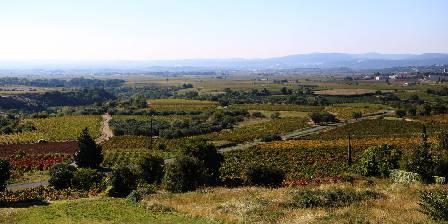 Clos des Coustoulins Parcours Découvertes: les vignobles des Terrasses du Larzac