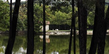 Clos des Coustoulins Parcours découverte: la route des Oliviers