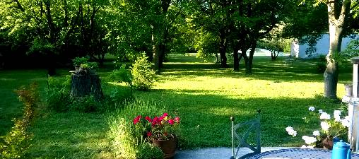 Chambre d'hote Vaucluse - le parc