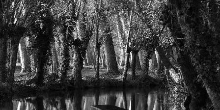 Parc Naturel du Marais Poitevin