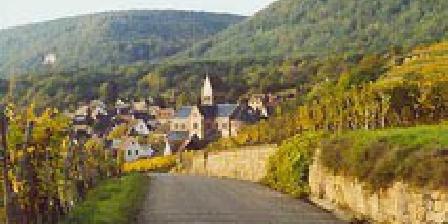 Gîtes en Alsace 2 gîtes 3 épis Gite de France dans un village pittoresque près de Colmar, Gîtes Gueberschwihr (68)