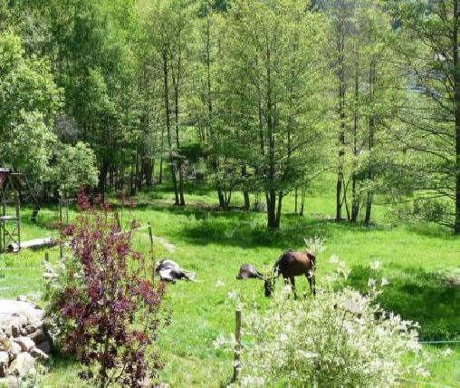 Chambre d'hote  la ferme de la Fontaine, Chambres d`Hôtes Fouchy (67)