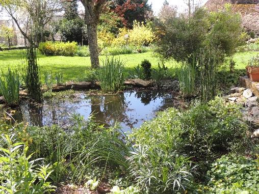 Chambre d'hote Creuse - le parc avec le bassin