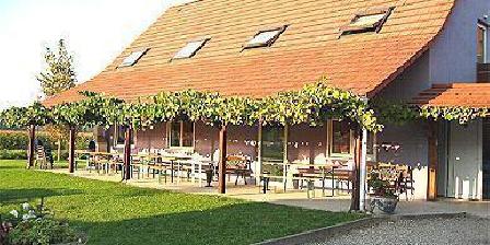 Gite Au Pays Rhenan > Gite D'Accueil Au Pays Rhenan, Chambres d`Hôtes Munchhausen (67)