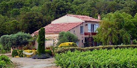 La Cagnardette  La Cagnardette Gites calmes au milieu des vignes à Grimaud -  Golfe de St-Tropez, Gîtes Grimaud (83)