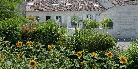 Gite Gîte Les Vignes > Gîte Les Vignes, Chambres d`Hôtes TESSON (17)