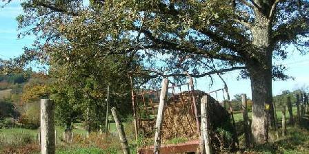 L'Ombre des Chênes L'Ombre des Chênes, Chambres d`Hôtes Chamboulive (19)