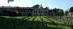 Gästezimmer Gîte de la Vieille Vigne