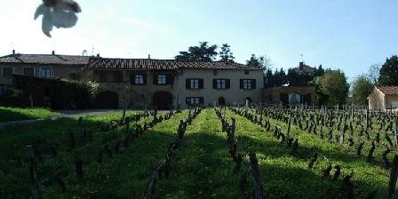 Gite Gîte de la Vieille Vigne > Gîte de la Vieille Vigne, Chambres d`Hôtes Nuelles (69)