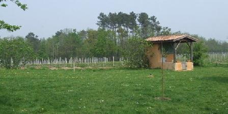 Ferme de Mouline Ferme de Mouline, Chambres d`Hôtes Sainte Foy La Longue (33)