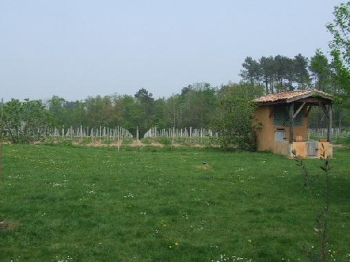 Ferme de Mouline, Chambres d`Hôtes Sainte Foy La Longue (33)