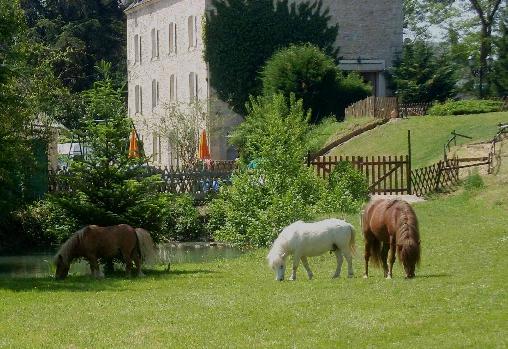 Le Moulin de Saint Martin, Chambres d`Hôtes Saint Martin D'Heuille (58)