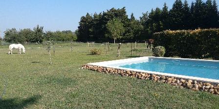 Le Clos de la Cigalière Le parc et la piscine