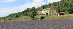 Bed and breakfast Domaine de Bertrandy