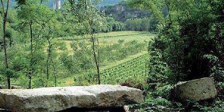 Domaine Le Peyrou Domaine Le Peyrou, Chambres d`Hôtes Luzech (46)