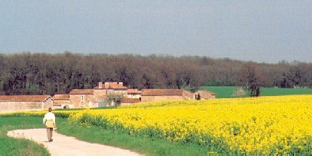 La Gacheterie La Gacheterie, Chambres d`Hôtes Montamisé (86)