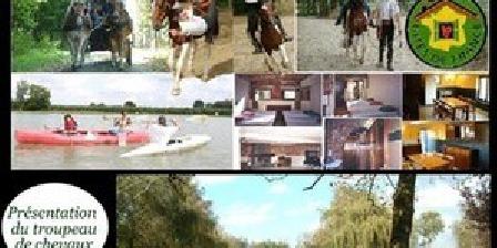 Gite de Chorette Gite de Chorette, Chambres d`Hôtes Maulde (59)