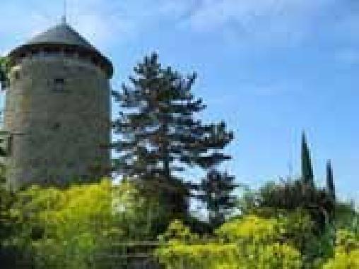 Moulin Géant, Chambres d`Hôtes Rochefort Sur Loire (49)