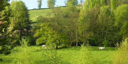 Chambre d'Hôtes Route79 Jardin et champs
