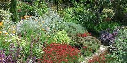 Artemisia Artemisia, Chambres d`Hôtes Angles-sur-l'Anglin (86)