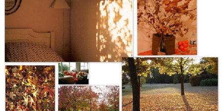 Les Renardières Chambres d'Hôtes Les Renardières, Chambres d`Hôtes Molineuf (41)
