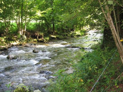 Forges d'Enfalits, la rivière