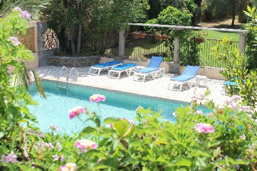 Chambre d'hote Corse 2A-2B - La piscine partagée