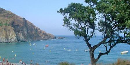 Gîte Geneix Philippe Locations de vacances direct bord de mer, Gîtes Cerbere (66)