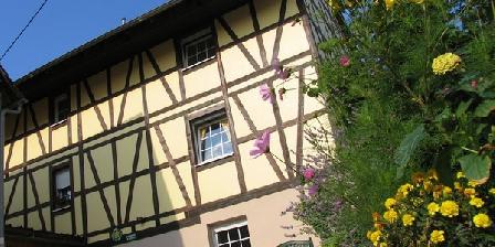 Chambre d'hotes Chez Dany > Chambres d'Hôtes Chez Dany, Chambres d`Hôtes Gerstheim (67)