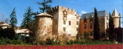 Gite Château d'Allemagne-en-Provence