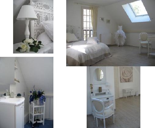 L'Intemporelle, Chambres d`Hôtes Saint Laurent Nouan (41)