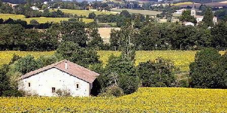 Gîte rural de la Grange -Gîte rural de la Grange, Gîtes Puylaurens (81)