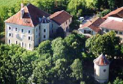 Château de Blagneux - Château Rocher, Gîtes Roybon (38)