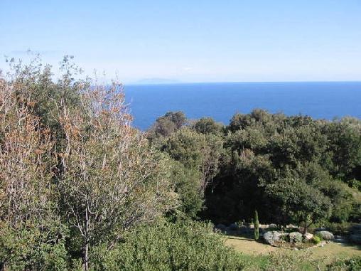 Chambre d'hote Corse 2A-2B - A Murella, Chambres d`Hôtes Poretto Brando (20)