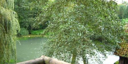 Le Moulin de Fillièvres Le Moulin de Fillièvres, Chambres d`Hôtes Fillievres (62)
