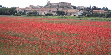 Le Couvent Le Couvent    village Azillanet