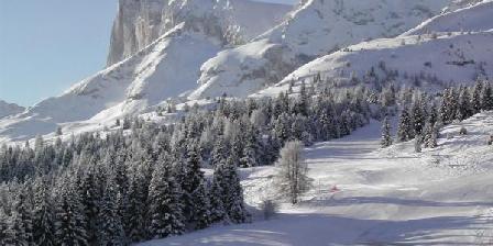 Gîte Bonnin Patrice Loue T2-6p  pied des pistes de Ski SuperDévoluy, Gîtes Saint Etienne En Dévoluy (05)