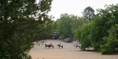 La Maison dans la Forêt  Balade aux sables du Cul de Chien