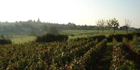 Domaine du Buisson Domaine du Buisson, Chambres d`Hôtes Sarcey (69)