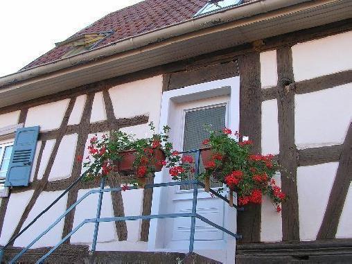 Fleur de Lin - Lorch, Gîtes Marlenheim (67)