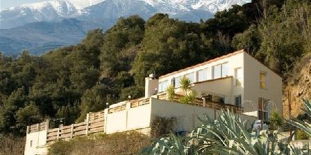 Mas Solar D'En Malcion Mas Solar D'En Malcion, Chambres d`Hôtes Amelie Les Bains-Palalda (66)